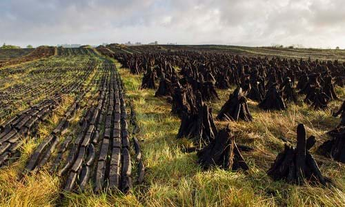 Insight - Ireland peat bogs for renewable energy